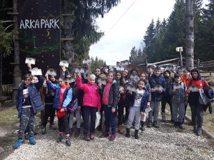 Paltinis -zoo,aventura